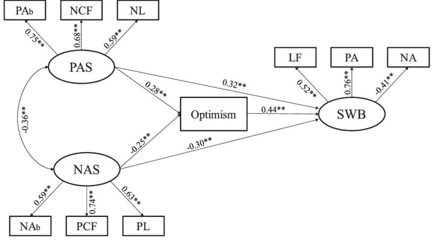 The final structural model (N = 384). Note: Factor