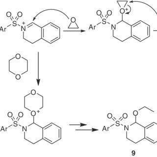 Scheme 10 Mechanism of the reaction of arenesulfonyl