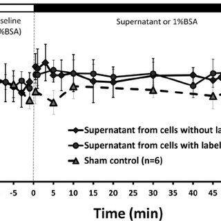 (PDF) 5. Adhesion of malignant mammary tumor cells MDA-MB