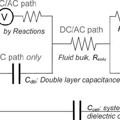 (PDF) Interactions of electrical fields with fluids