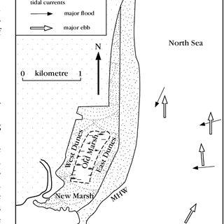 (PDF) Coastal Geomorphology of Great Britain