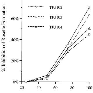 (PDF) Design of peptidic and non-peptidic CD4 inhibitors