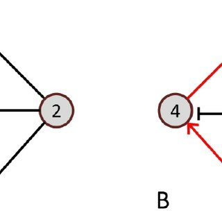 (PDF) Biological Network Inference: A Review of Methods