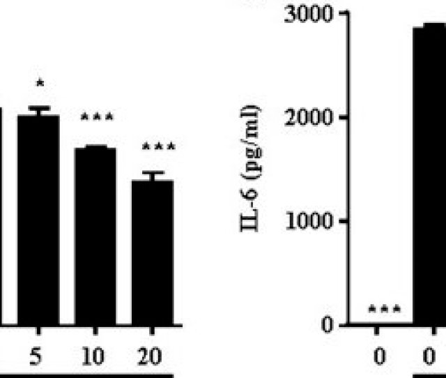 Effects Of Xh 14 On Lps Induced Inflammatory Cytokine Production In Murine Macrophages