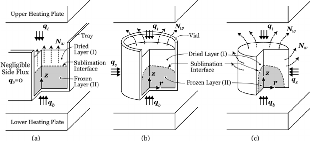 Schematic descriptions of various freeze-drying problems