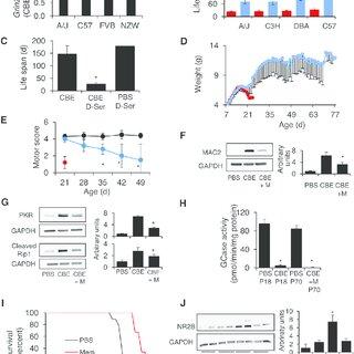 (PDF) Identification of Modifier Genes in a Mouse Model of