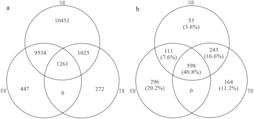 The Venn diagram shows the congruence of SR, ER, and TR