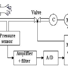 (PDF) Arterial Pulsations in the Blood Pressure Cuff: Are