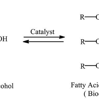 Flow diagram for a homogeneous base-catalyzed process for