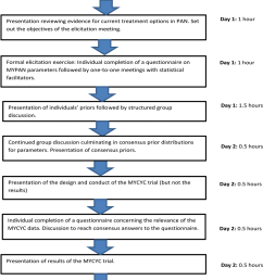 flow diagram illustrating the sequence of activities undertaken during the mypan prior elicitation meeting and the [ 850 x 1167 Pixel ]