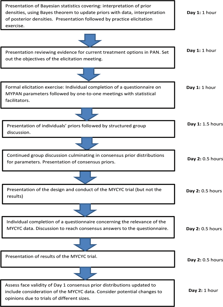 hight resolution of flow diagram illustrating the sequence of activities undertaken during the mypan prior elicitation meeting and the