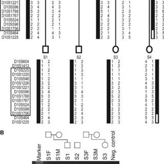 (PDF) A Chromosome 10 Variant With a 12 Mb Inversion [inv