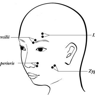 (PDF) Spontaneous Facial Mimicry Is Enhanced by the Goal