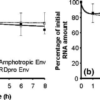 (PDF) Thermosensitivity of the Reverse Transcription