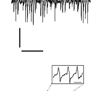 Programmable amplifier logic control chain. SCK, serial