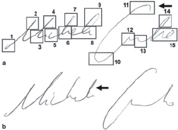 An example of a questioned signature. ( a ) Also shown are