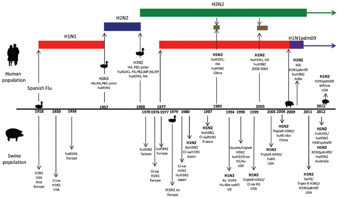Figure. Significant points in the history of influenza viruses ...