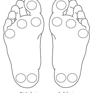 (PDF) The Effects of Tai Chi on Peripheral Somatosensation