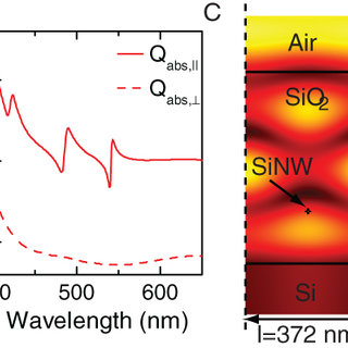 (A) Schematic drawing of optical setup including lamp