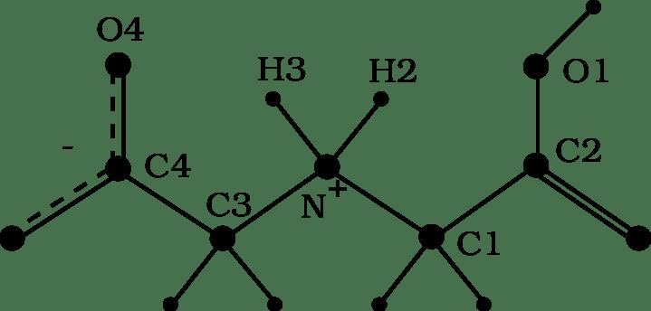 Iminodiacetic acid molecule, zwitterionic form. The
