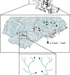 map of sampled streams in central maryland region paired watersheds download scientific diagram [ 838 x 1087 Pixel ]