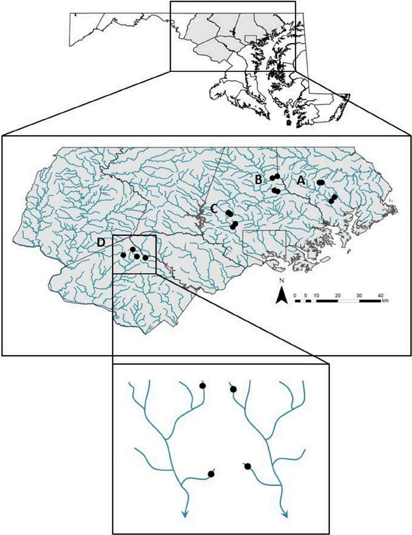 hight resolution of map of sampled streams in central maryland region paired watersheds download scientific diagram
