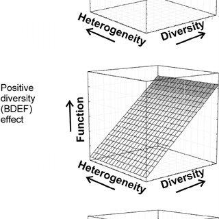 (PDF) Resource Heterogeneity Moderates the Biodiversity
