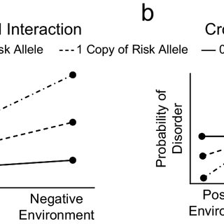 Different models of gene-environment interactions. The