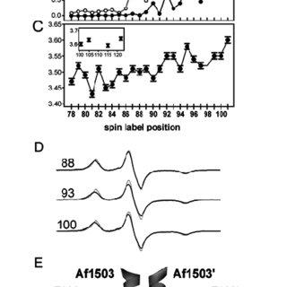 (PDF) Site-directed spin labeling EPR spectroscopy in