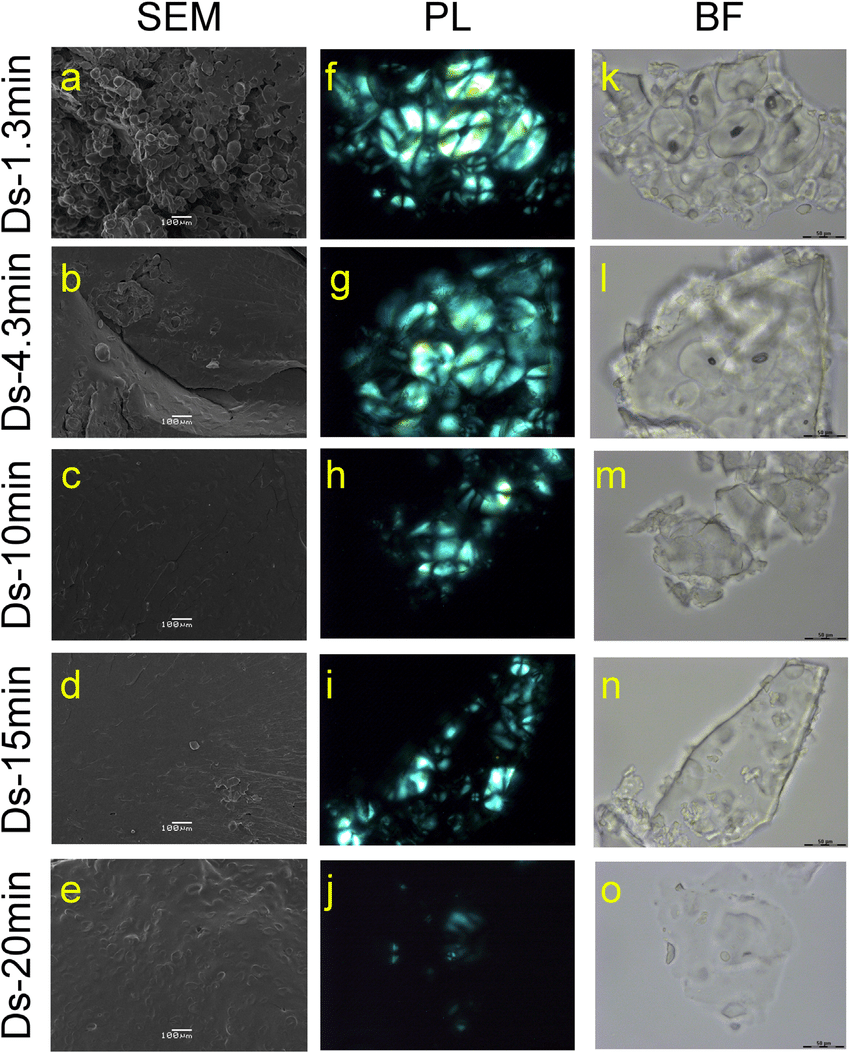 hight resolution of representative scanning electron and light microscopy images of desiree samples ds at different processing