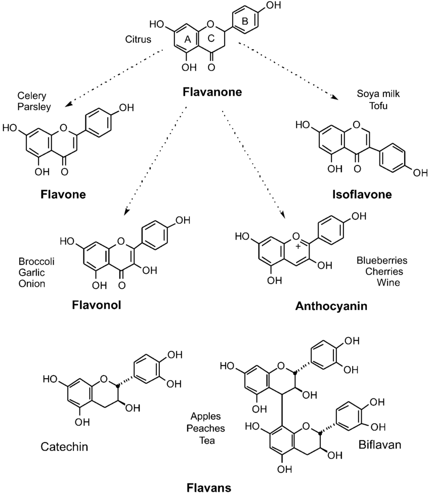hight resolution of flavonoid structures and occurrence the propanoid structure consists of two fused rings the first