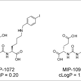 (PDF) First-in-Man Evaluation of 2 High-Affinity PSMA-Avid