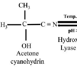 Enzymatic hydrolysis of linamarin to hydrogen cyanide