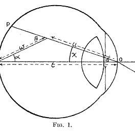(PDF) Physiology of Glare