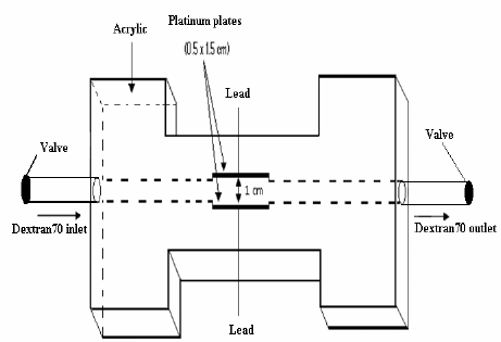 The proposed circuit