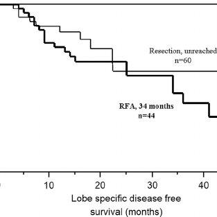 Kaplan–Meier disease-free survival of study patients. The