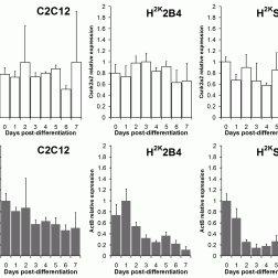 (PDF) Identification and Validation of Quantitative PCR