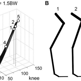 (PDF) Constraint-Based Exclusion of Limb Poses for