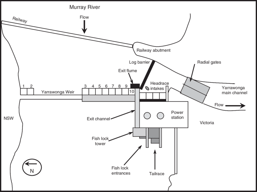 Schematic plan of Yarrawonga Weir, fish lock, exit flume