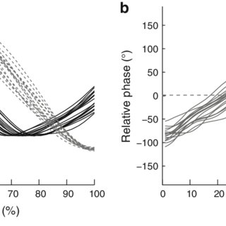 (PDF) Coordination Pattern Variability Provides Functional