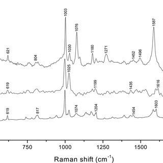 (PDF) Application of Raman Spectroscopy, Surface-Enhanced