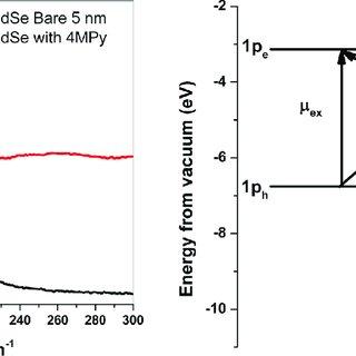 (PDF) FDSERS17 The Theory of Surface-Enhanced Raman