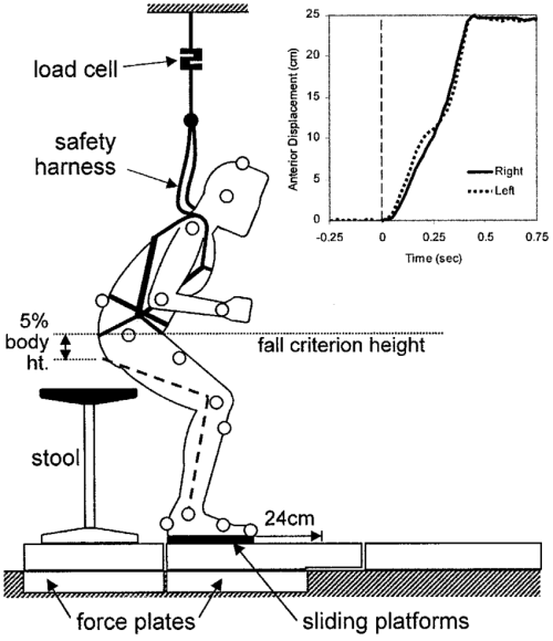 small resolution of safety harness diagram wiring diagram for you safety harness model diagram of the experimental set up
