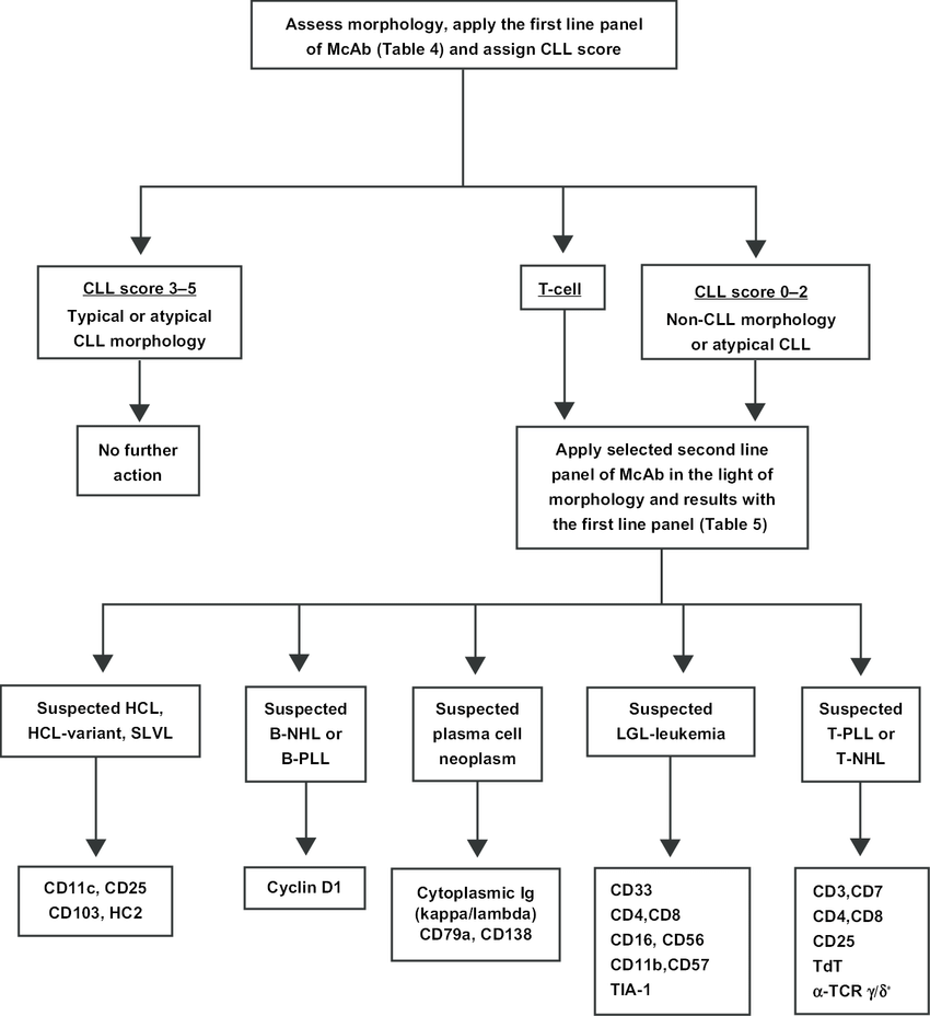 hight resolution of flow chart for the diagnosis of chronic lymphoproliferative disorders note reproduced from newbu 65 abbreviations nhl b non hodgkin s lymphoma pll