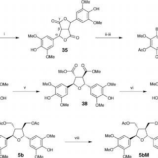 Partial HSQC 13 C– 1 H correlation NMR spectra showing