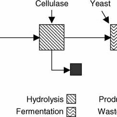 (PDF) Updates on Softwood-to-Ethanol Process Development