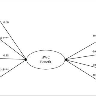 (PDF) Community Perceptions of Police Body-Worn Cameras