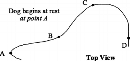 A typical 2D kinematics question. In a horizontal plane