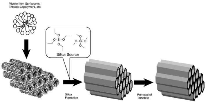 12 General Concept for synthesis of mesoporous silica from
