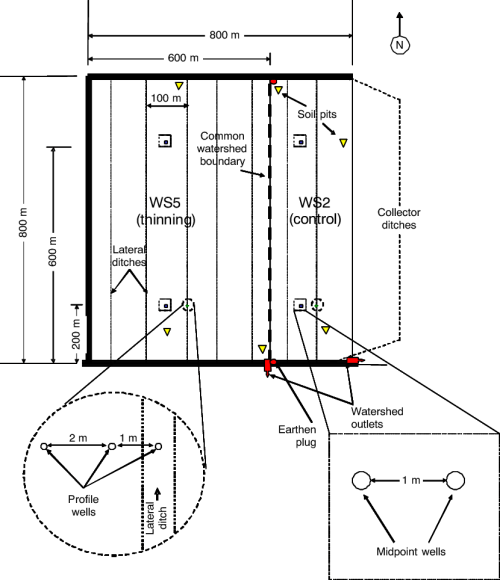 small resolution of paired watershed design with typical locations of water table wells download scientific diagram